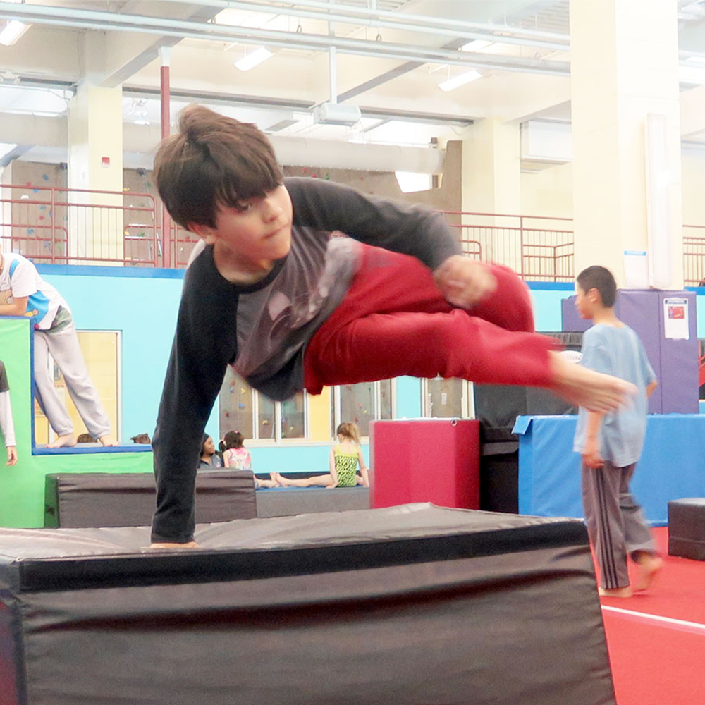 Full-Day Gymnastics